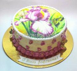 Фото торты #7