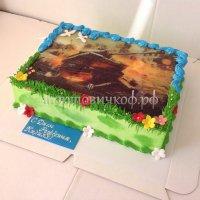 Фото торты #19