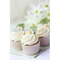 Капкейки и мини пирожные #19